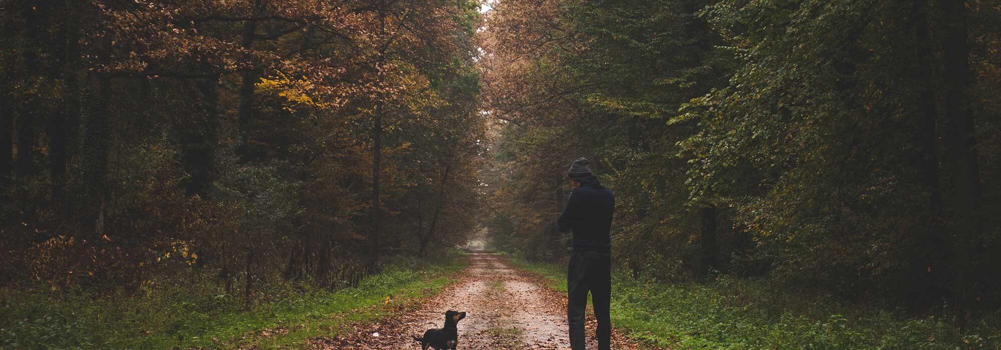 Dit is waarom wandelen gezond is voor je